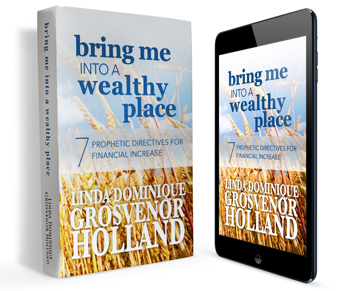 Bring Me Into A Wealthy Place Book